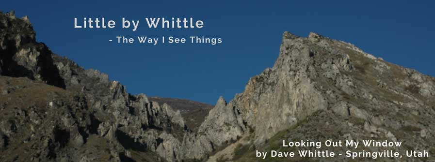 Little by Whittle header image
